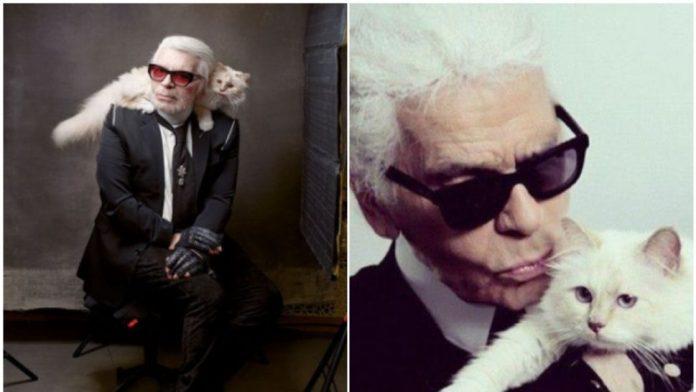 Conoce a la gatita que heredó la fortuna de Karl Lagerfeld