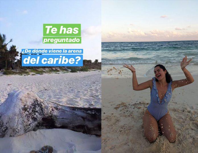 ¿Por qué la arena del Mar Caribe es tan blanca y fina?