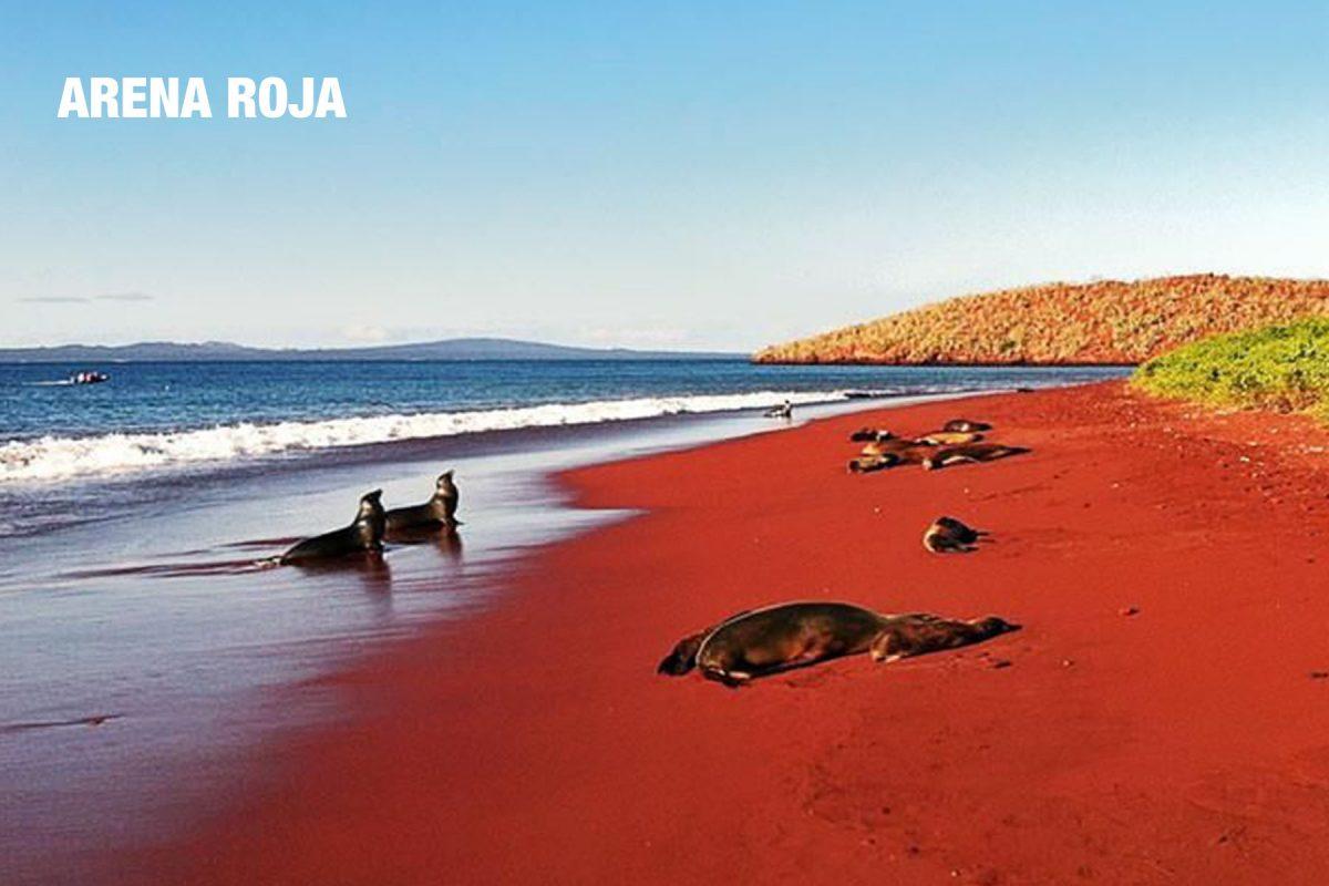 arena roja playa